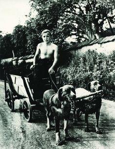 boy-cart