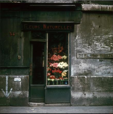 Flower Shop, Paris, (ca. 1950-1960)