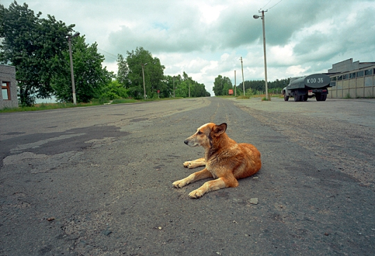 legacy-inside-the-chernobyl-exclusion-zone-02
