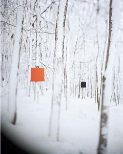 Woodwork #22, 2015