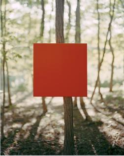 Woodwork #9, 2014
