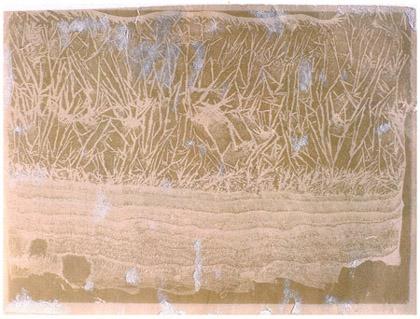 august-strindberg-photogram-of-crystallisation-c-1892-1896-12-x-9-cm