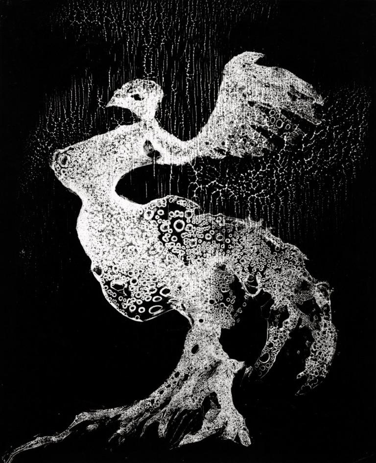 heinz-hajek-halke-die-flugelmutter-1954-gelatin-silver-print-ferrotyped-292-x-24-cm