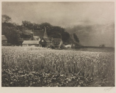 the-onion-field-mersea-island-essex-1890-george-davison-the-royal-photographic-society-collection-national-media-museum-bradford-sspl-creative-commons-by-nc-sa