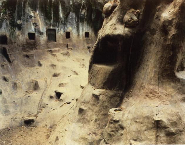 baboons-arnhem-netherlands-1989