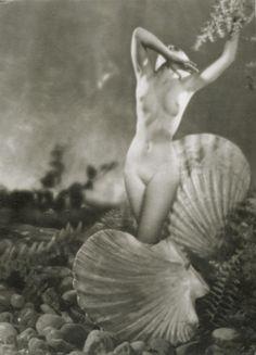 Pál Angelo Funk (1939) My Venus