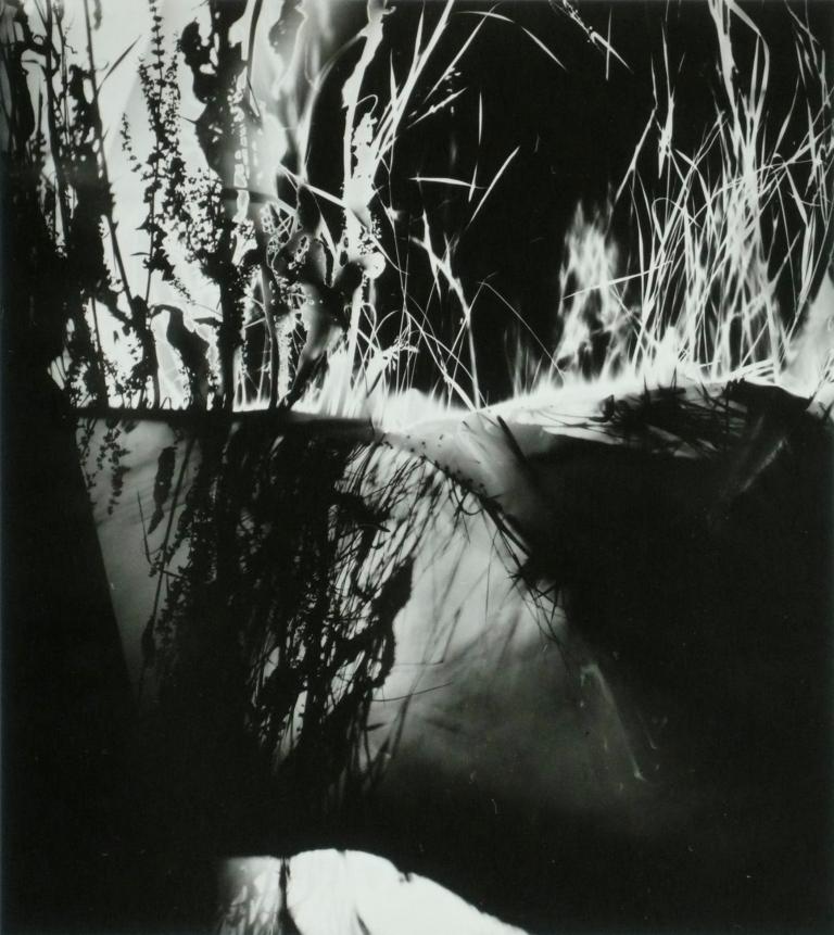 neusuess-nachtbild039-1991-fotogramm
