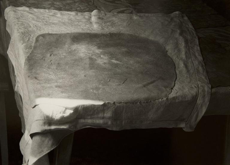 12861-precek-posledniostruvek-1989kopie