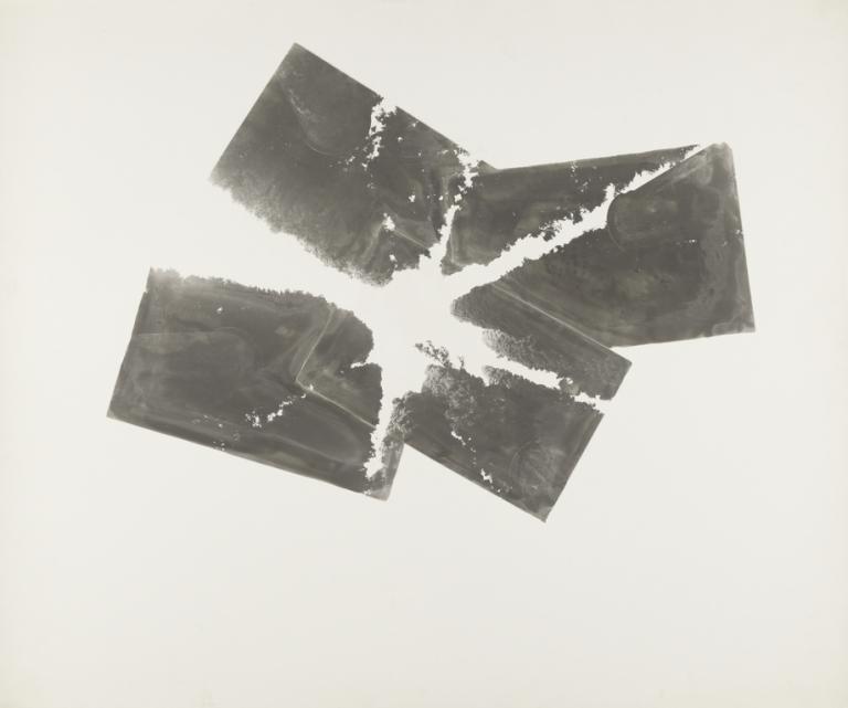 gerald-incandela-photographer-american-born-tunisia-1952-in-the-garden-of-dannuncio-american-1977-gelatin-silver-print-46-4-x-35-cm-18-14-x-13-34-in