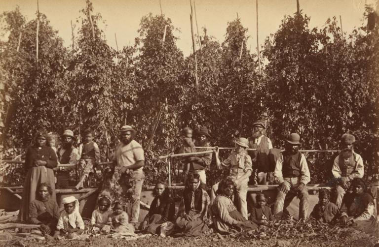 group-of-aborigines-in-hop-gardens-coranderrk-1876-fred-kruger