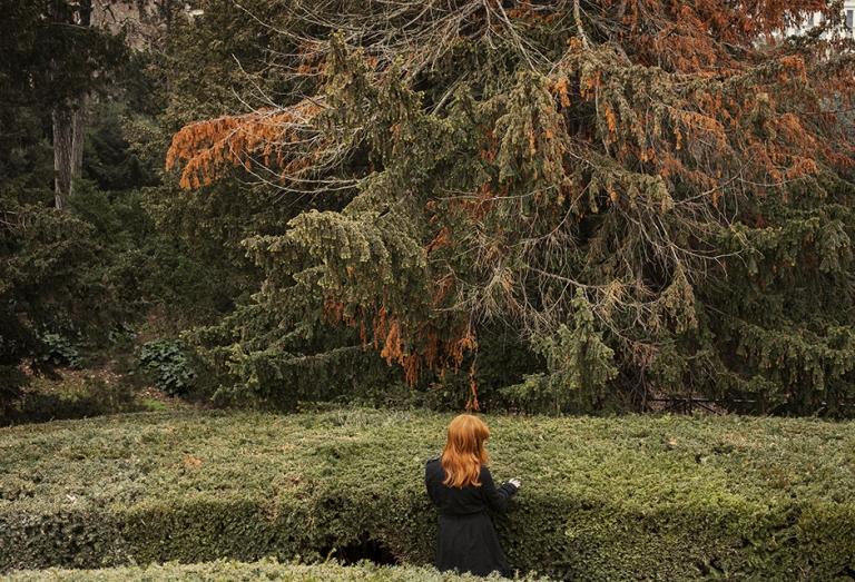in-the-park-february-2013-pigment-print-framed-305-x-42-cm
