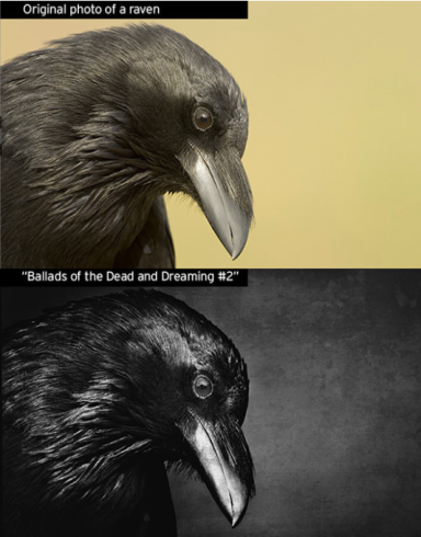 Comparison of Hansen original image of bird with Ong's monochrome version