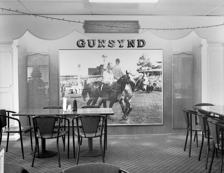 Jane Brown - Gunsynd, Victoria Hotel, Goondiwindi, Queensland, 2014 :16