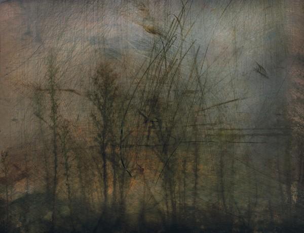 landscape-no-101-2007