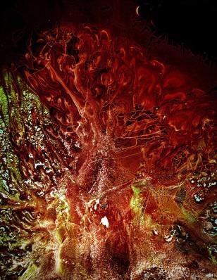 Ryan Tews (n.d.) 'scanograph'