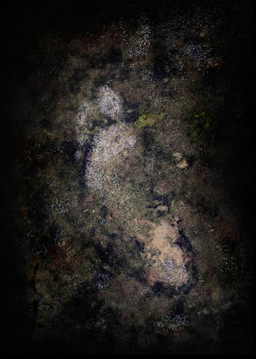 Natura facit saltus - Fortgang, 2016