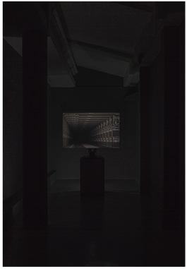 Matan Mittwoch (2013) Laterna Magika photo-screening; darkroom enlarger used as projector and 110x73x1cm translucent screening