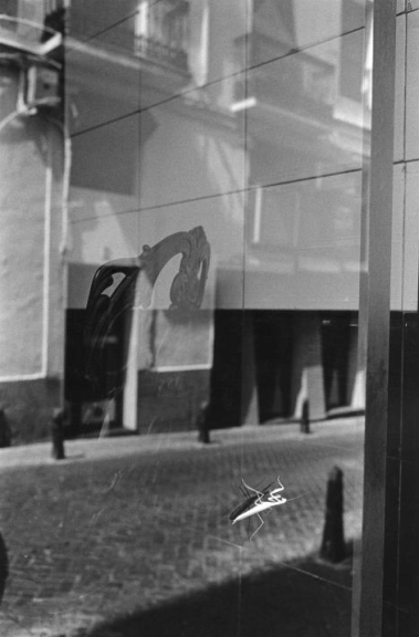 Mantis, Madrid, 1998
