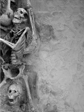 Screen Shot 2017-05-09 at 9.14.47 pm