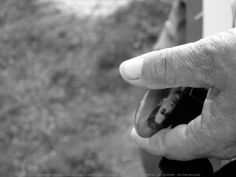 Screen Shot 2017-05-09 at 9.17.06 pm