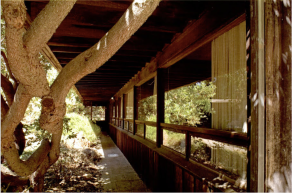 Alan Weintraub (2007) from Alan Hess, Forgotten Modern: California Houses 1940-1970