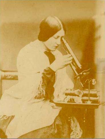 John Dillwyn Llewelyn (c.1853) The Microscope. Collodion negative 15.24 cm x 12.7 cm