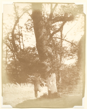 Nevil Story-Maskelyne, The Fagot Carrier, mid to late 1840s, salt print from a paper negative, 22.5 x 17.5 cm