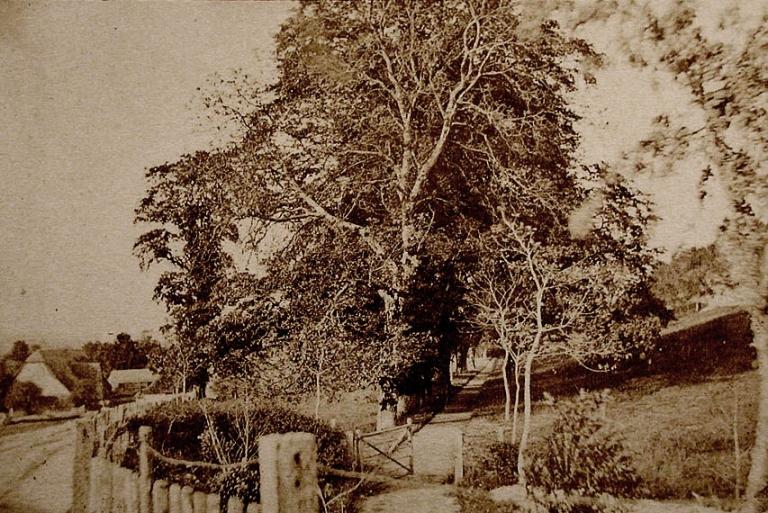 Path, Wiltshire