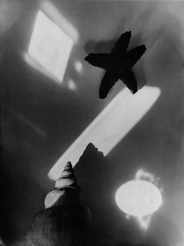 Jaromír Funke – Exotic Still-life, 1928-1929