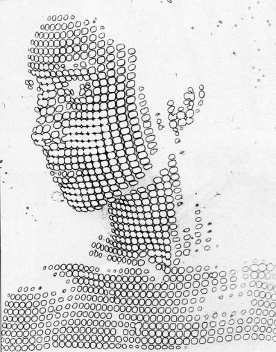 (1955) Solarisation