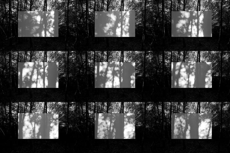 2009 Moving Shadows 1 : 2, 2009