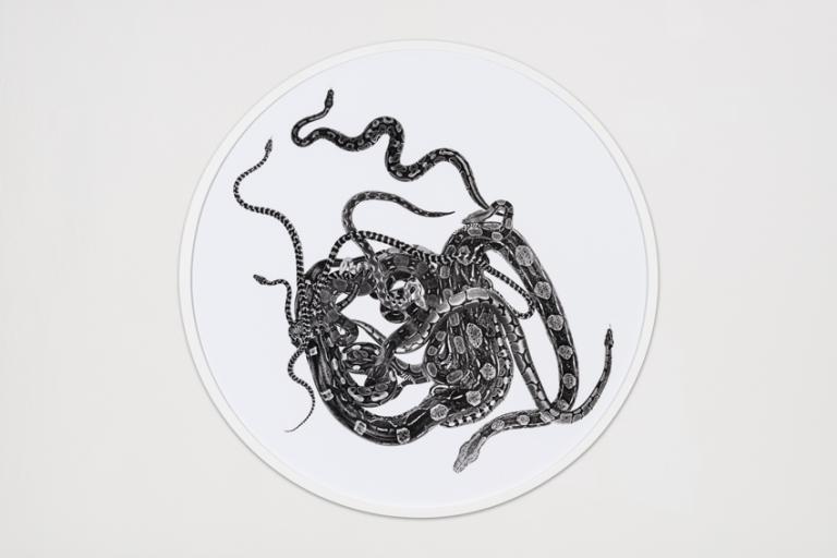 Schlangenmosaik V, 2012, Fotografie auf Barytpapier, Ø   131,5