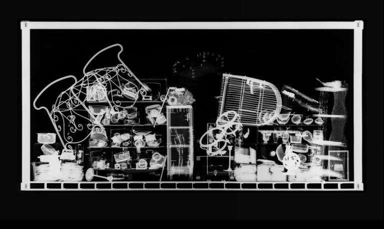 Hab und Gut N° 4, 2012, Radiografie auf Röntgenfilm, 98,7 x 21