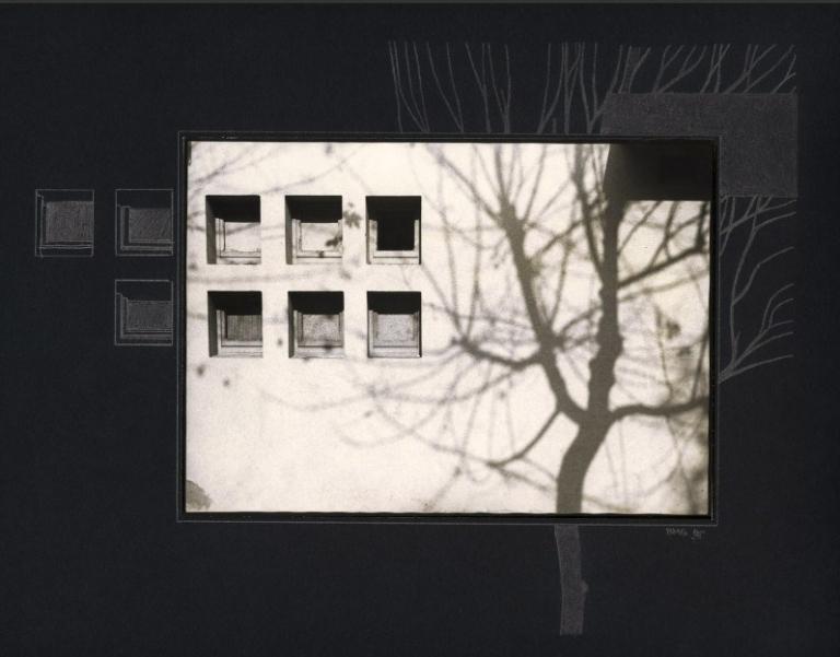 Les NOIRES (1980)
