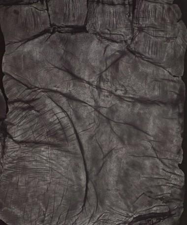 (1998) La Main, Recto, silver gelatin print 120 x 100 cm.