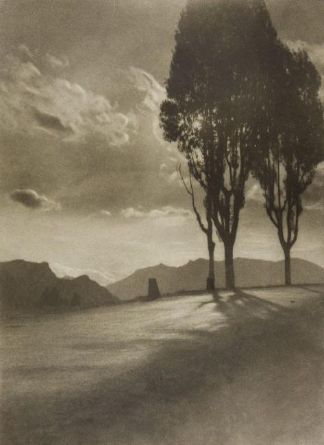Pia Panini (n.d.) Cuando el día muere, bromoli, 378 x 277-cm.
