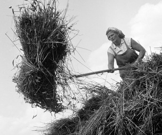 "Marie Šechtlová (1950's) From the series ""Agriculture""."