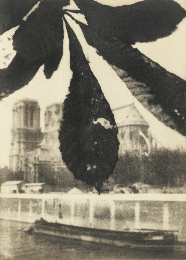 Pierre Dubreuil Notre Dame de Paris 1908 Oil print 9 1:2 x 6 7:8 ins (24.1 x 17.5 cm)