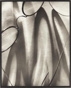 Pierre Dubreuil (c.1930) Translucidités Palladium print, 44.8 x 36.5 cm.
