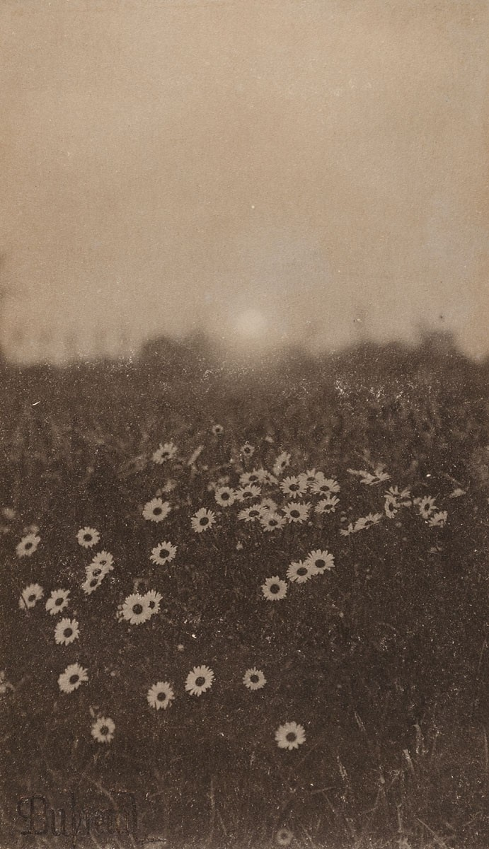 The golden hour Pierre Dubreuil 16.80x9.70 cm Platinum 1897 Museum of Arts and Crafts in Hamburg