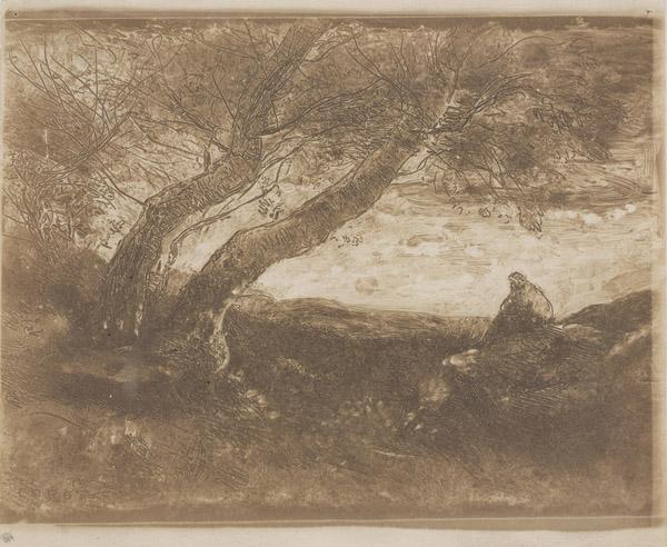 The Dreamer (Le Songeur), 1854 (cliché-verre)