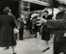 Market+Street+Philadelphia+PA+1944-45