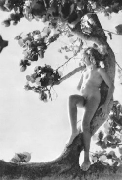 Nell Dorr (1929) photogravures from a page of In A Blue Moon published in 1939 by G.P. Putnam's Sons.