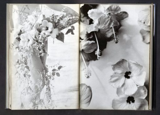 Nell Dorr (1929) photogravures in a spread from In A Blue Moon published in 1939 by G.P. Putnam's Sons.