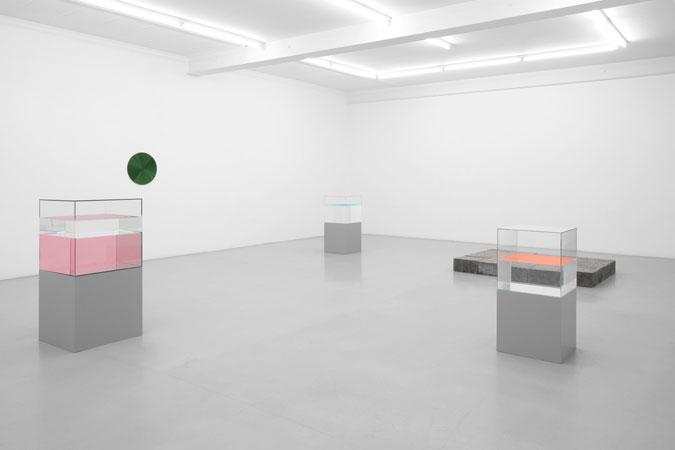 Galerie_Micheline_Szwajcer_Ann_Veronica_Janssens_2010_05