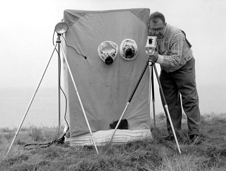Eric Hosking adjusting electronic flash equipment by a bird hide - late 1950's