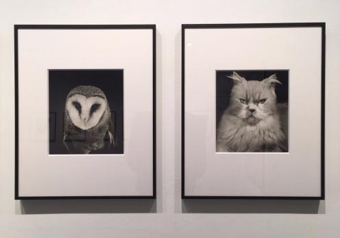 Installation view © Galerie—Peter—Sillem