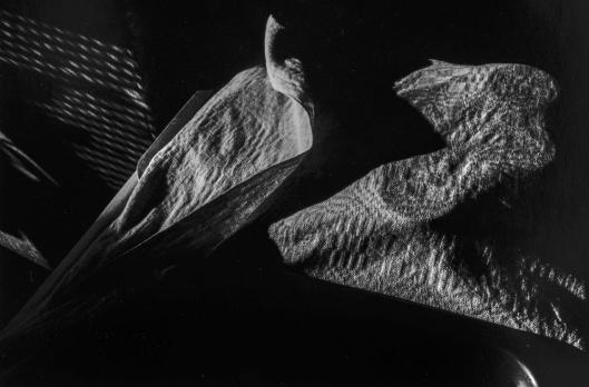 Fugo (1980) Blackout #19. 2004 gelatin silver print 22.2 x 33.0 cm.