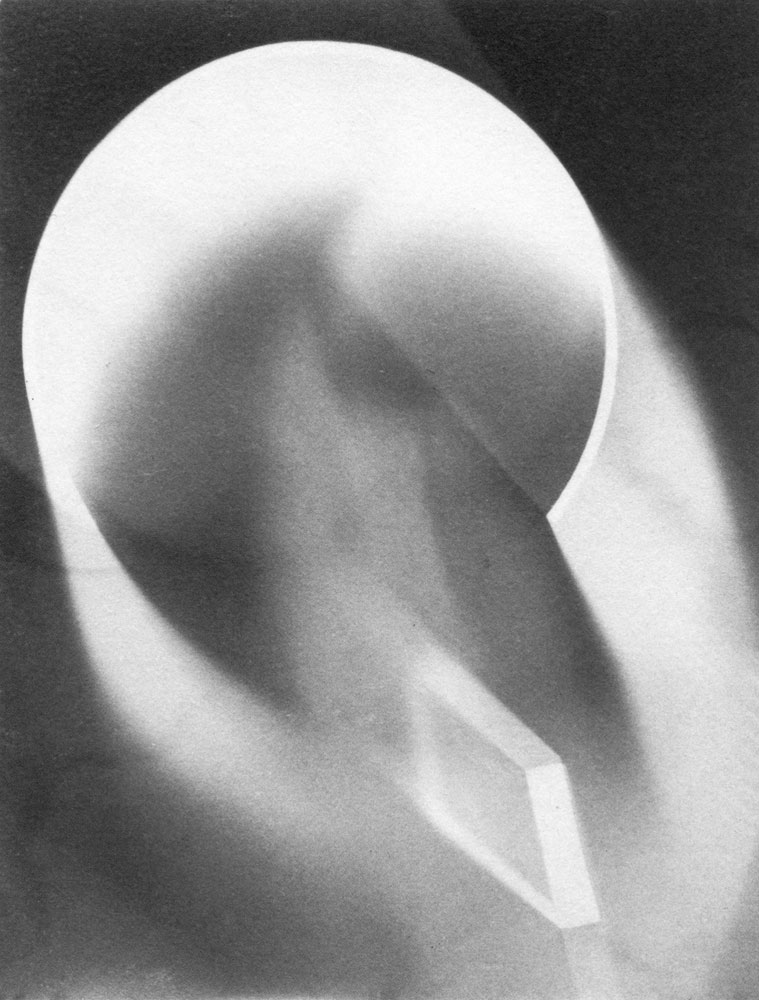Photogram, 1937-39 Gelatin Silverprint 4 5:8 x 3 7:16 in Location- Unknown
