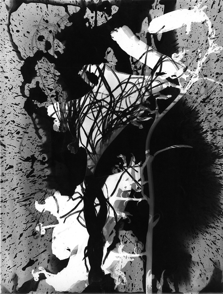 Roger Catherineau, Photogramme , 1957 Vintage gelatin silver print, 15 3:4 x 11 7:8 in. (40 x 30.2 cm)
